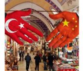 "2018 ""Turkish Year"" in China"